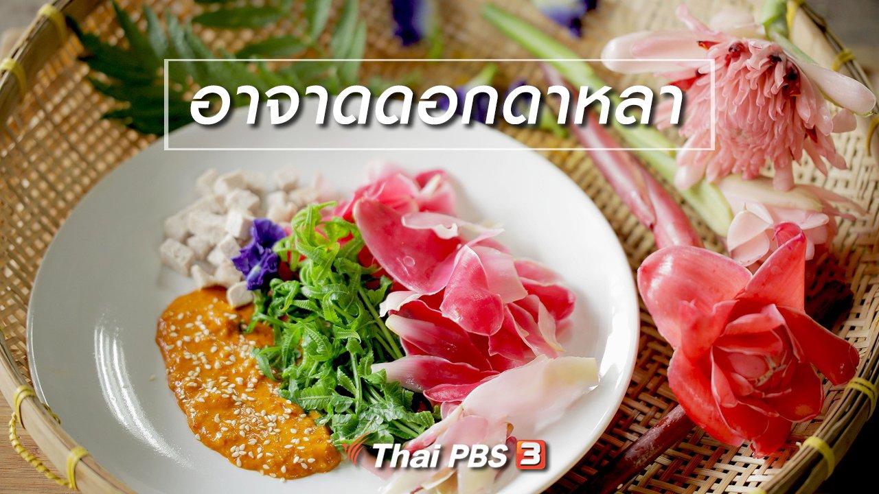 Foodwork - เมนูอาหารฟิวชัน : อาจาดดอกดาหลา