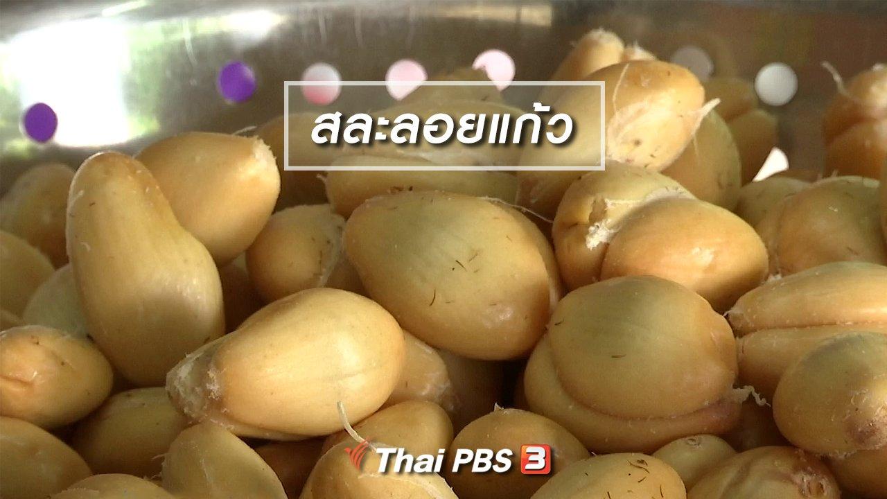 จับตาสถานการณ์ - ตะลุยทั่วไทย : สละลอยแก้ว