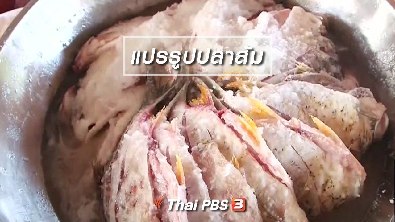 จับตาสถานการณ์ - ตะลุยทั่วไทย : แปรรูปปลาส้ม