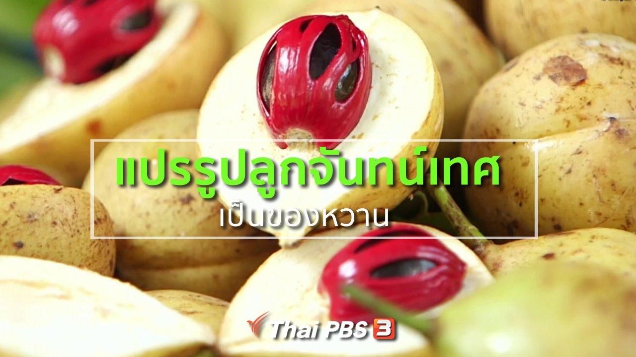 ทุกทิศทั่วไทย - อาชีพทั่วไทย : แปรรูปลูกจันทน์เทศเป็นของหวาน