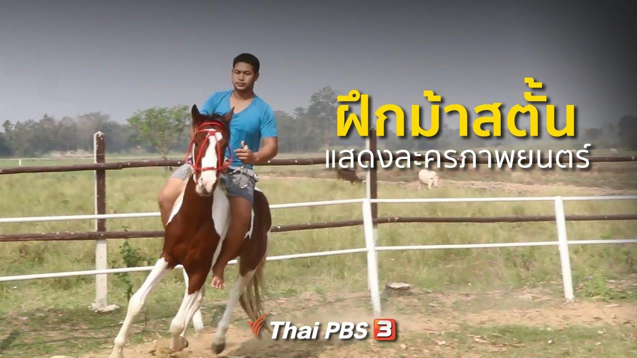 ทุกทิศทั่วไทย - อาชีพทั่วไทย : ฝึกม้าสตั้นแสดงละครภาพยนตร์