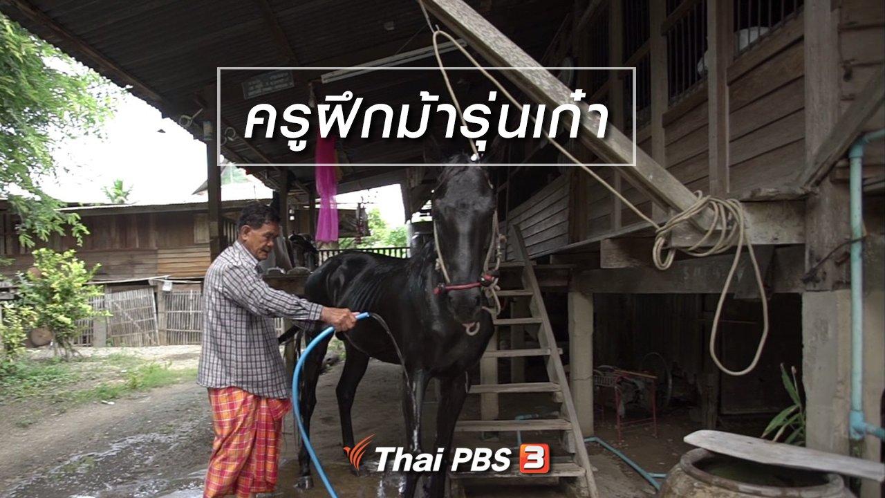 ลุยไม่รู้โรย - สูงวัยไทยแลนด์ : ครูฝึกม้ารุ่นเก๋า