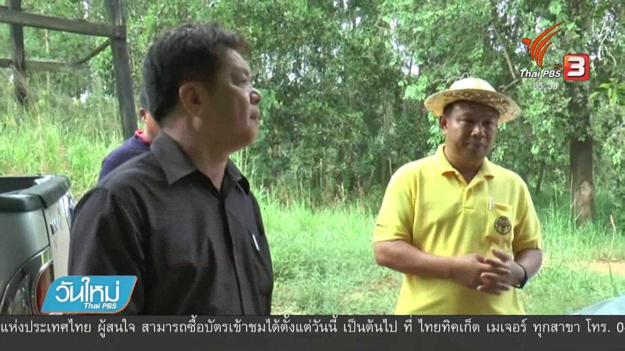 วันใหม่  ไทยพีบีเอส - ยังรักษาอาการช้างป่าบาดเจ็บถูกรถตู้ชนไม่ได้