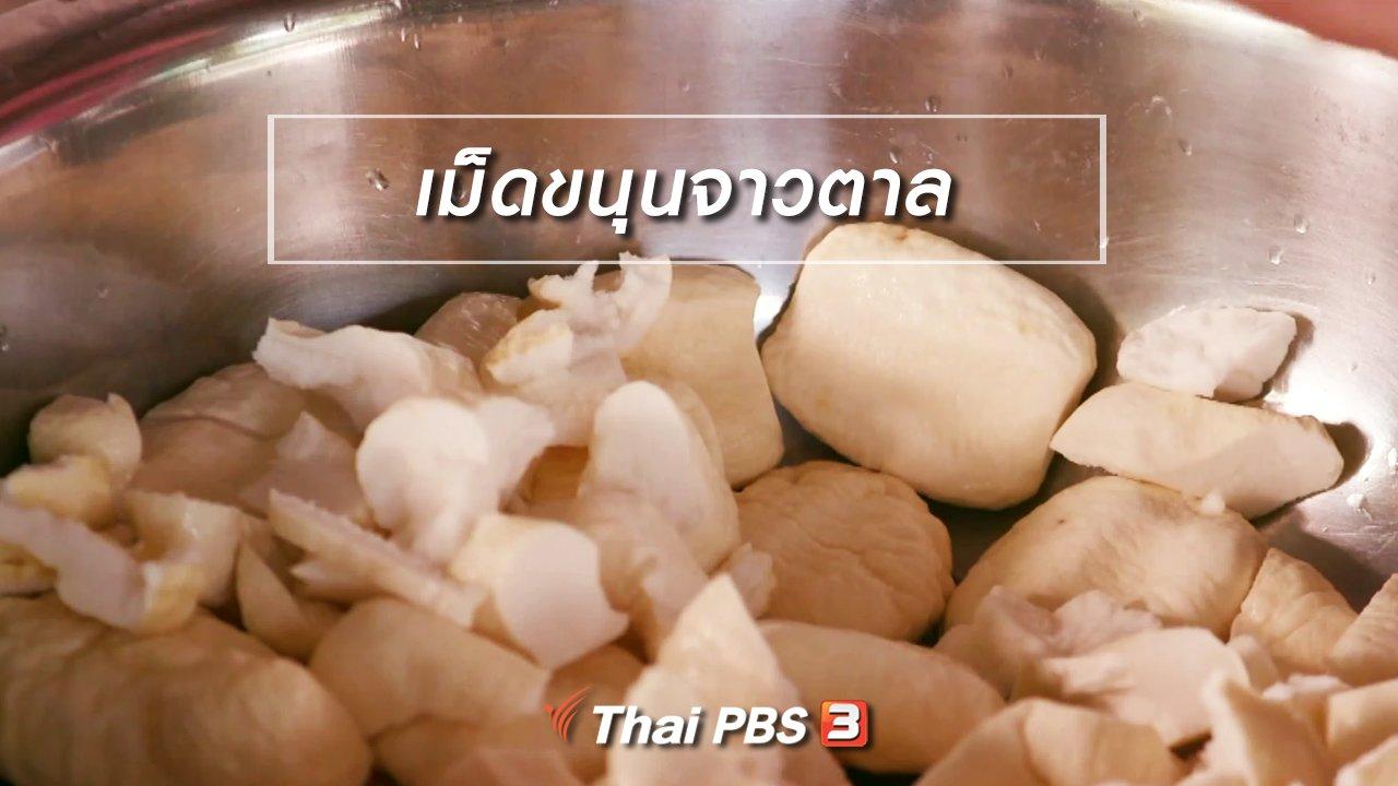 จับตาสถานการณ์ - ตะลุยทั่วไทย : เม็ดขนุนจาวตาล