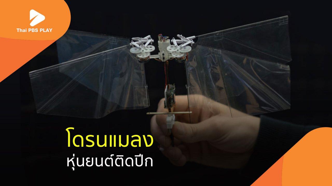 Thai PBS Play - โดรนแมลง..หุ่นยนต์ติดปีก