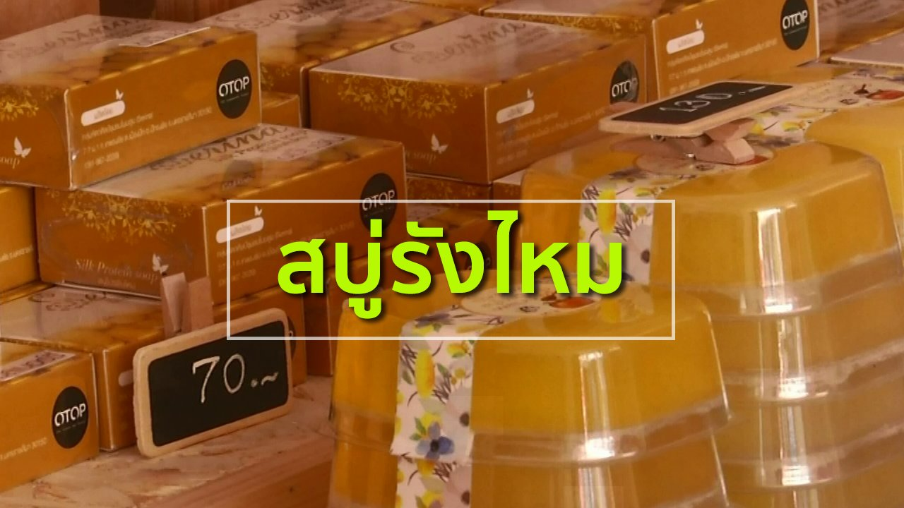 ทุกทิศทั่วไทย - อาชีพทั่วไทย : สบู่รังไหม