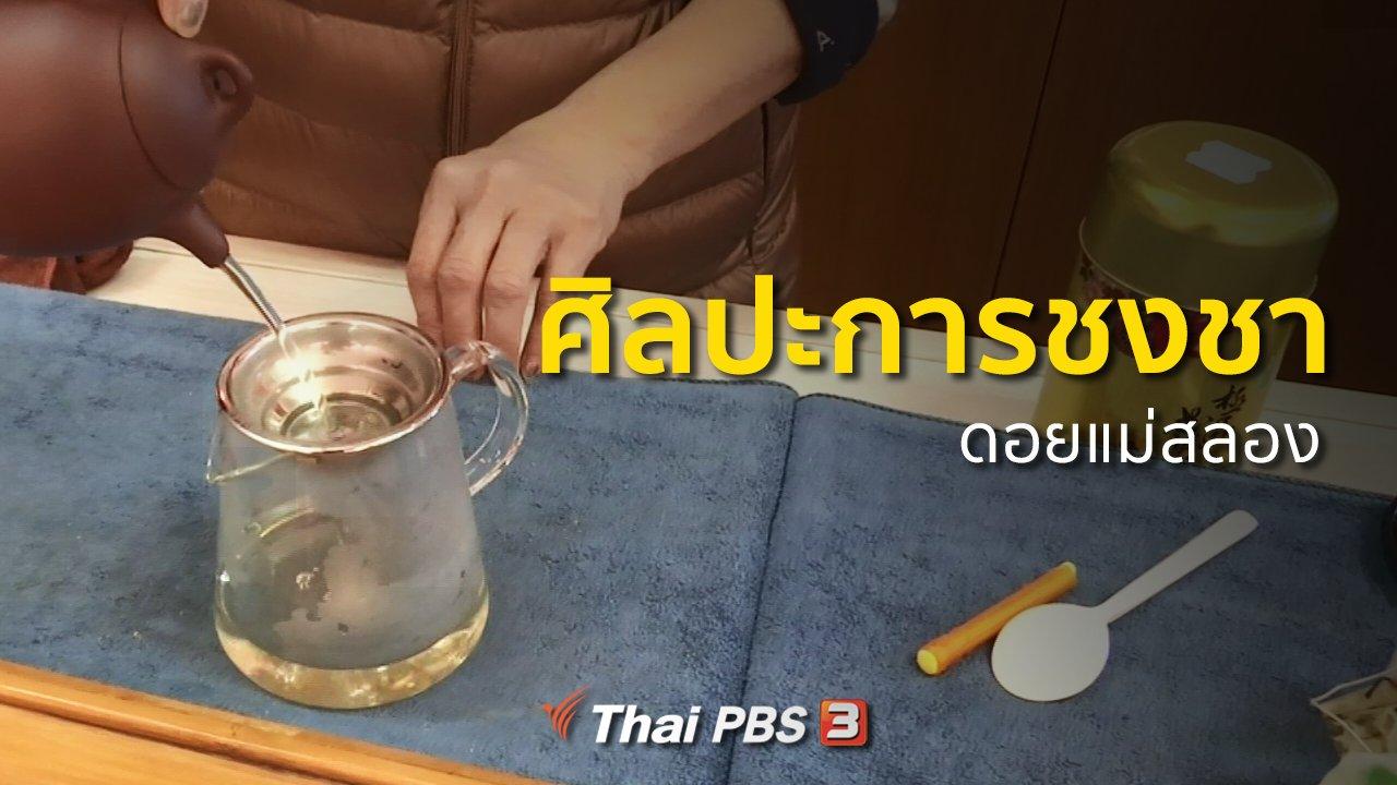 ทุกทิศทั่วไทย - วิถีทั่วไทย : ศิลปะการชงชาดอยแม่สลอง