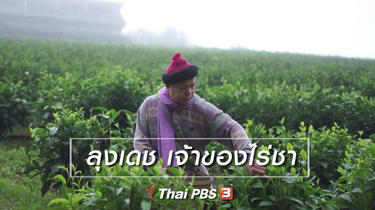 ลุยไม่รู้โรย สูงวัยดี๊ดี - สูงวัยไทยแลนด์ : ลุงเดช เจ้าของไร่ชา