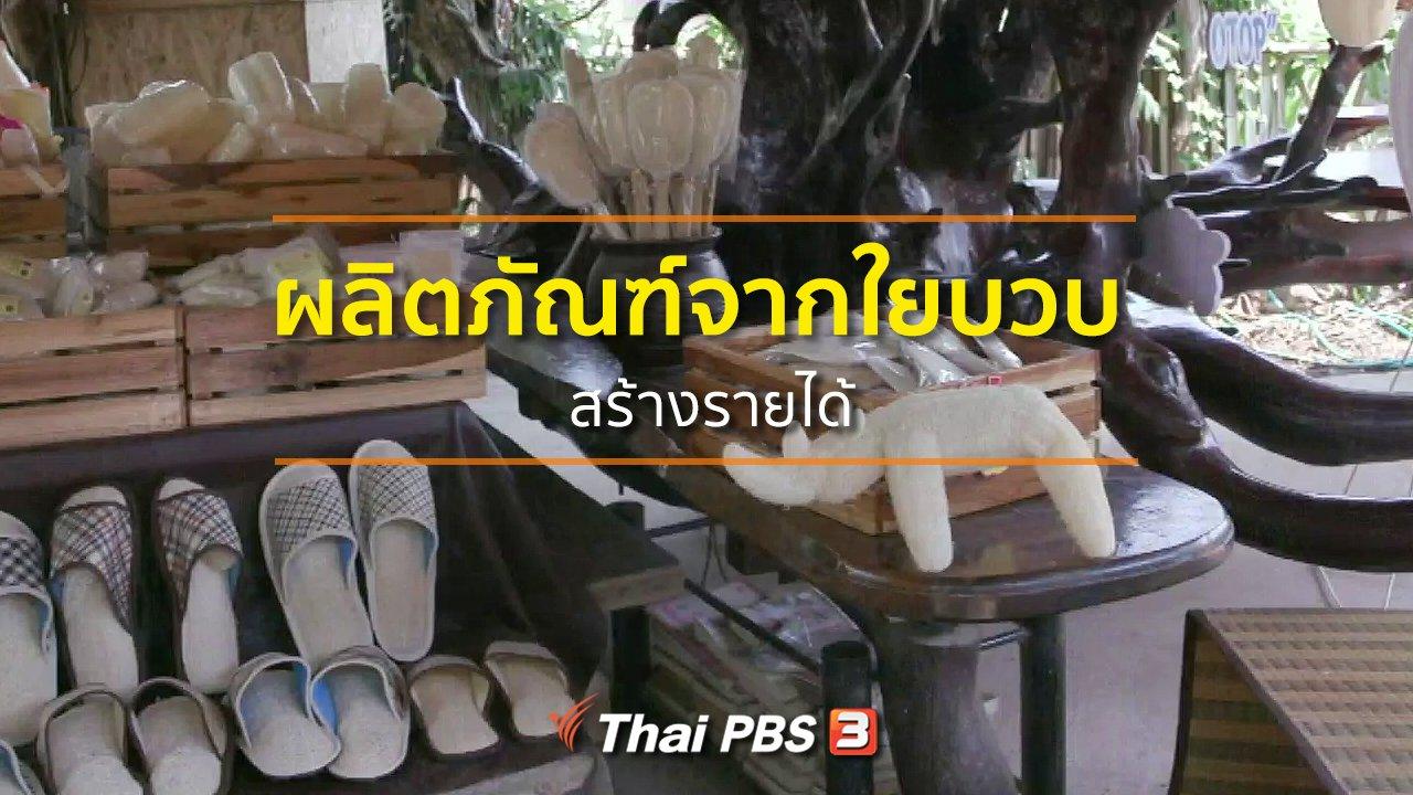 ทุกทิศทั่วไทย - ชุมชนทั่วไทย : ผลิตภัณฑ์จากใยบวบสร้างรายได้