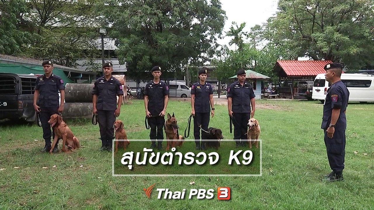 รู้เท่ารู้ทัน - สุนัขตำรวจ K9