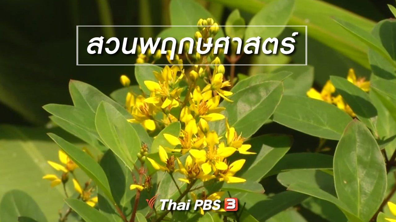 จับตาสถานการณ์ - ตะลุยทั่วไทย : สวนพฤกษศาสตร์