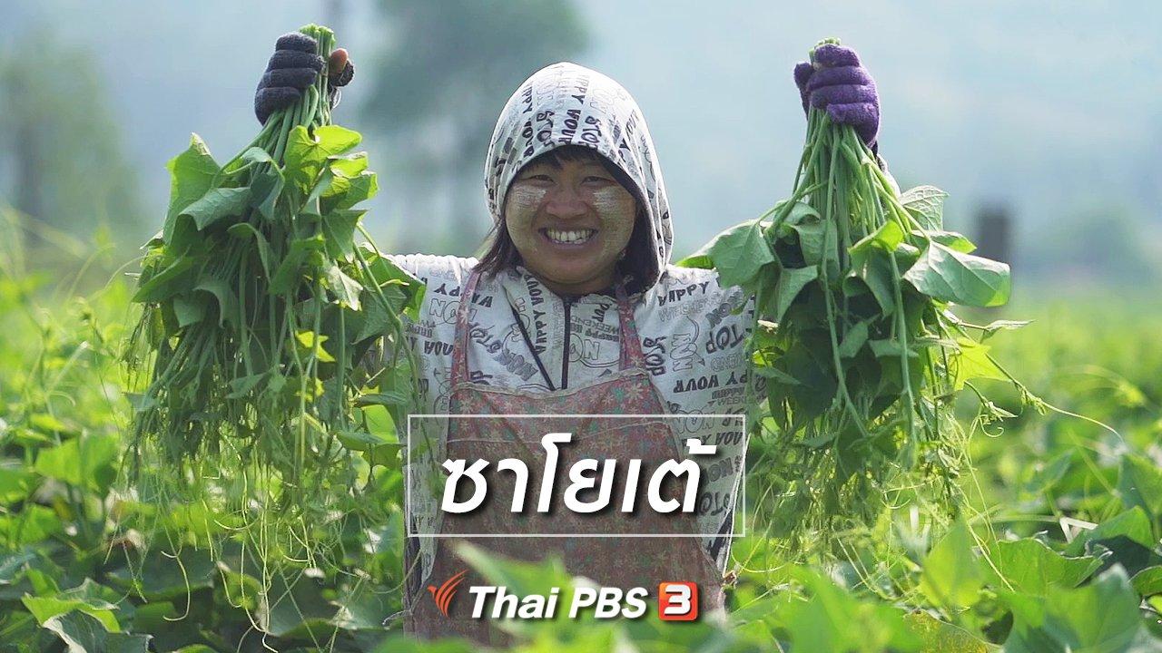 ทั่วถิ่นแดนไทย - เรียนรู้วิถีไทย : ซาโยเต้