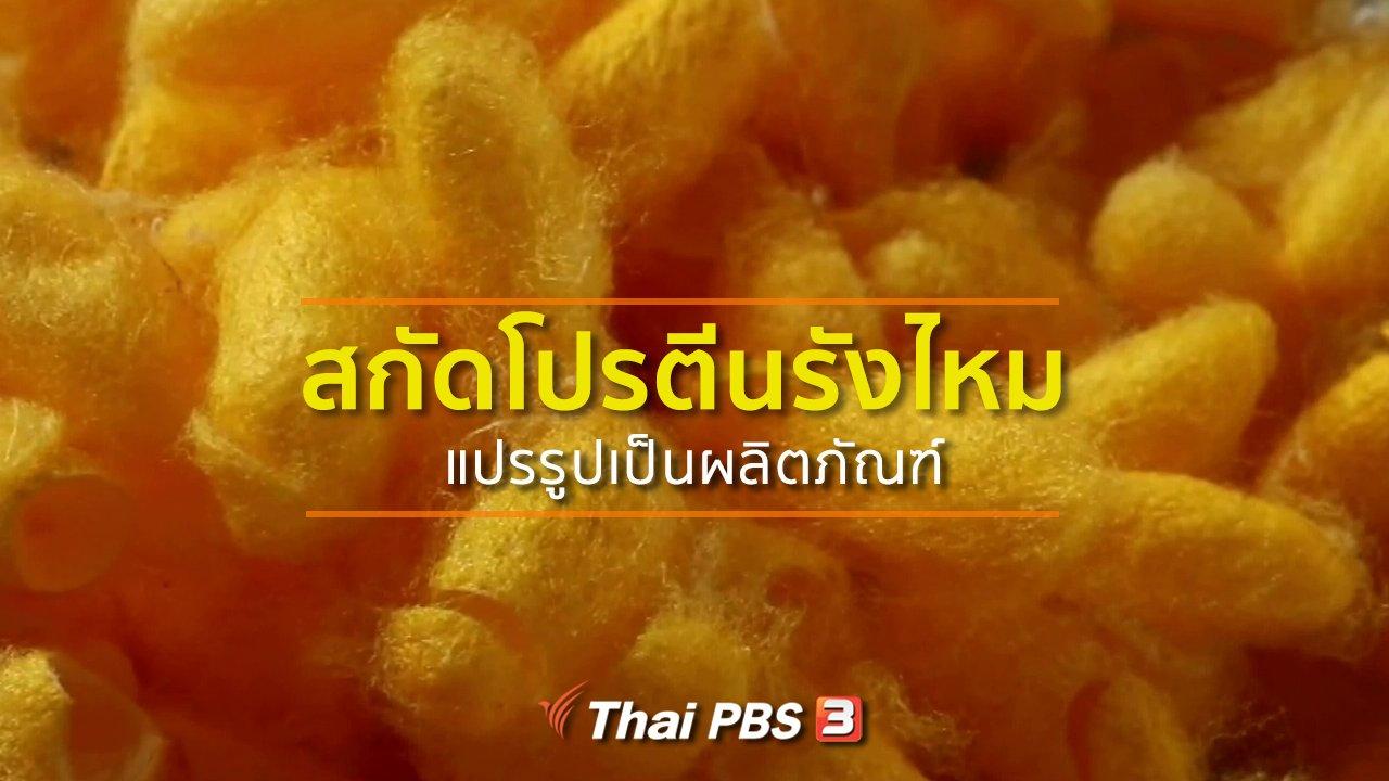 ทุกทิศทั่วไทย - ชุมชนทั่วไทย : สกัดโปรตีนรังไหมแปรรูปเป็นผลิตภัณฑ์