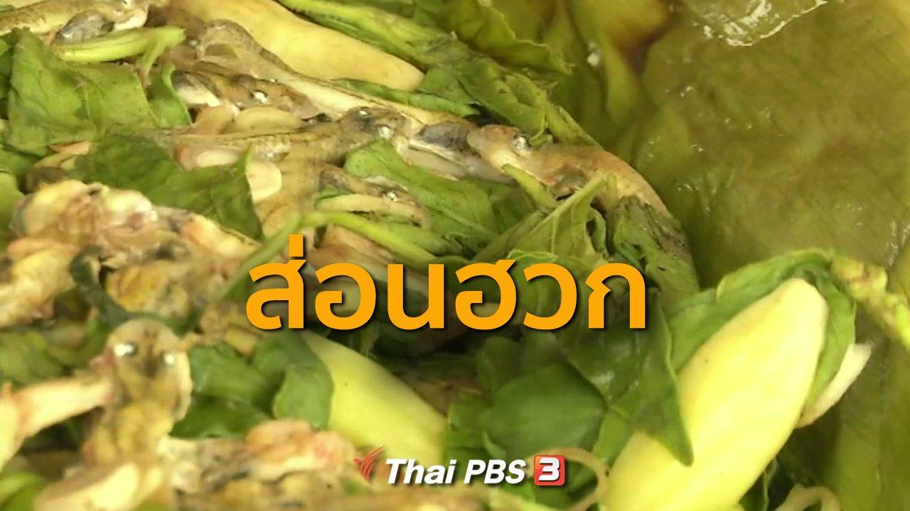 ทุกทิศทั่วไทย - ชุมชนทั่วไทย : ส่อนฮวก (หาลูกอ๊อด)