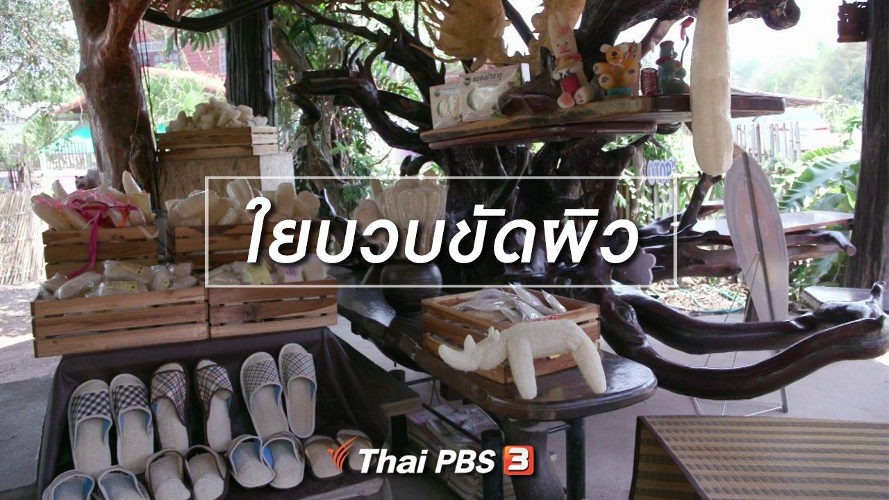 จับตาสถานการณ์ - ตะลุยทั่วไทย : ใยบวบขัดผิว