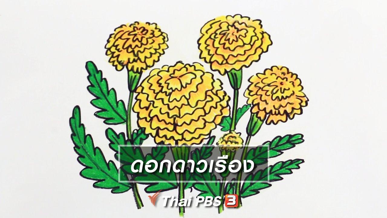 สอนศิลป์ - สอนศิลป์สอนวาด : ดอกดาวเรือง