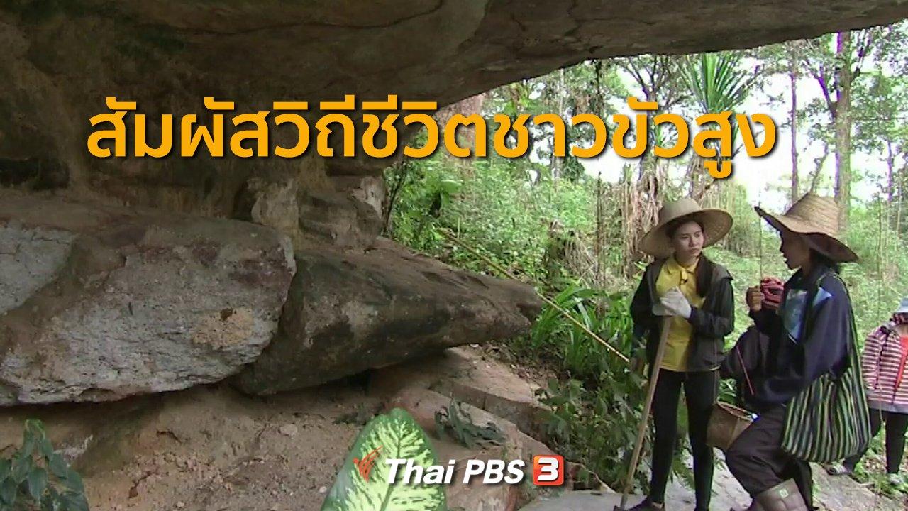 ทุกทิศทั่วไทย - ชุมชนทั่วไทย : ท่องเที่ยวสัมผัสวิถีชีวิตชาวขัวสูง