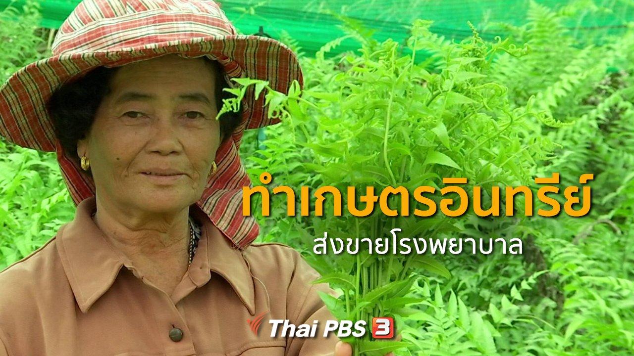 ทุกทิศทั่วไทย - ชุมชนทั่วไทย : ทำเกษตรอินทรีย์ส่งขายโรงพยาบาล