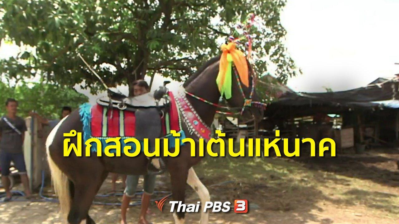 ทุกทิศทั่วไทย - ชุมชนทั่วไทย : ฝึกสอนม้าเต้นแห่นาค