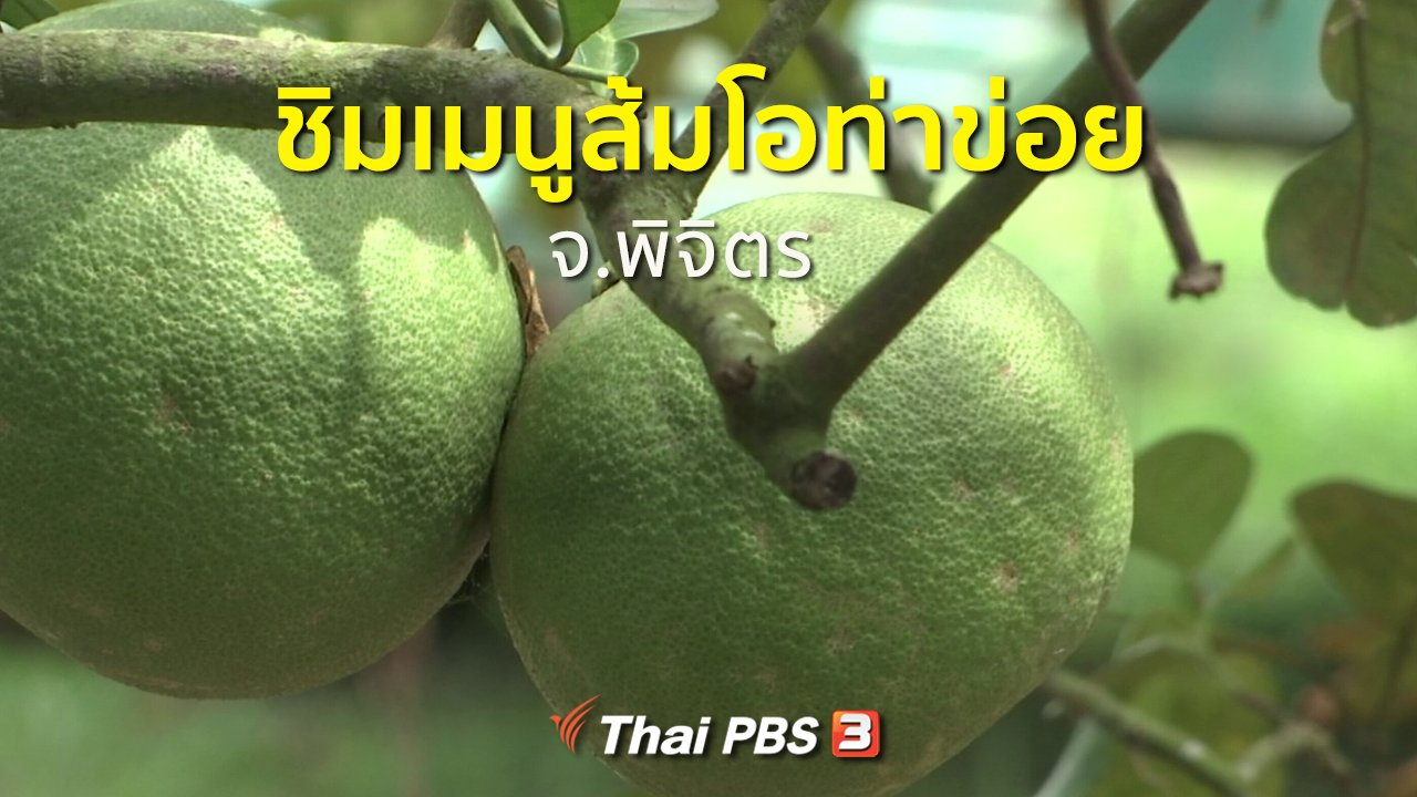 ทุกทิศทั่วไทย - ชุมชนทั่วไทย : ชิมเมนูส้มโอท่าข่อย จ.พิจิตร
