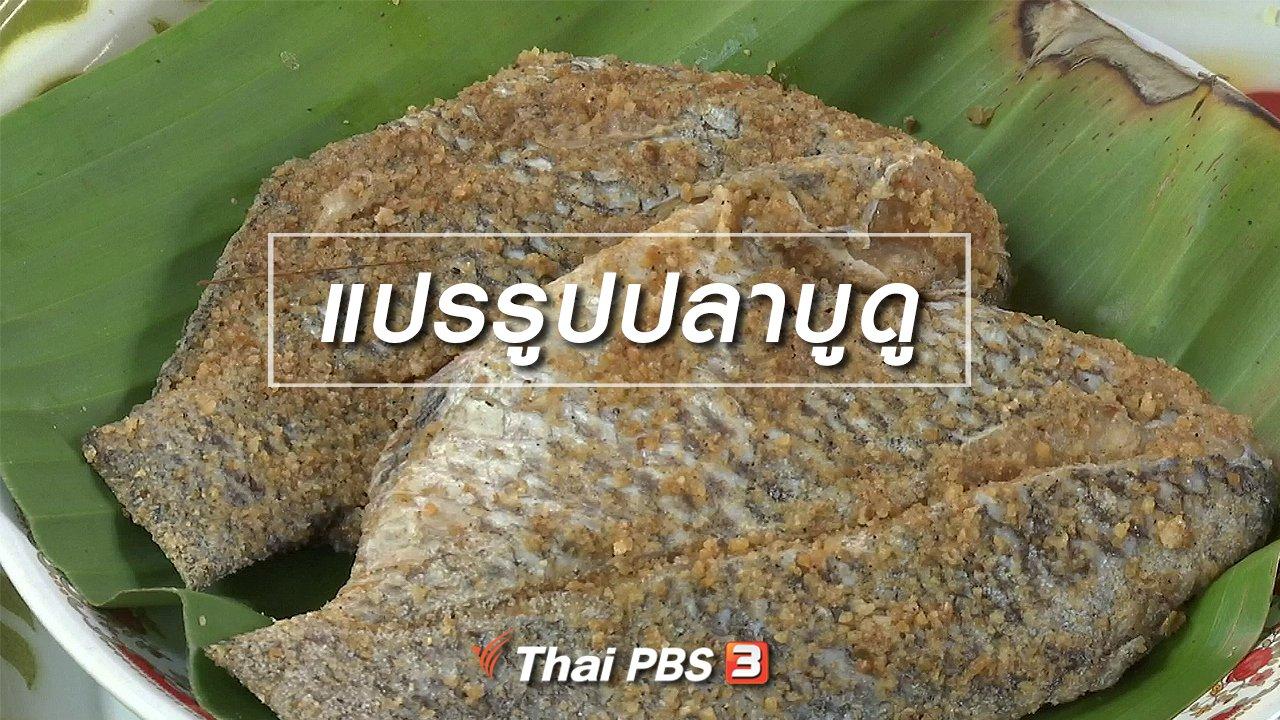 จับตาสถานการณ์ - ตะลุยทั่วไทย : แปรรูปปลาบูดู