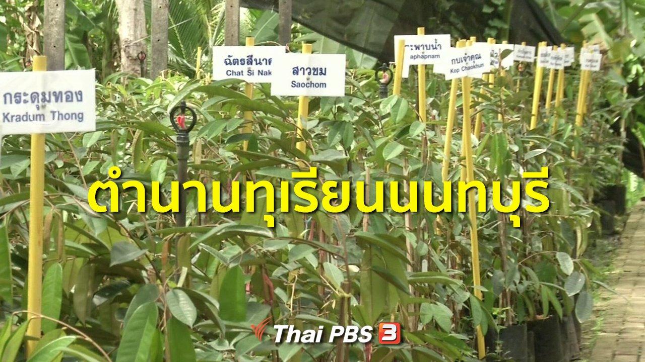 ทุกทิศทั่วไทย - ชุมชนทั่วไทย : ตำนานทุเรียนนนทบุรี