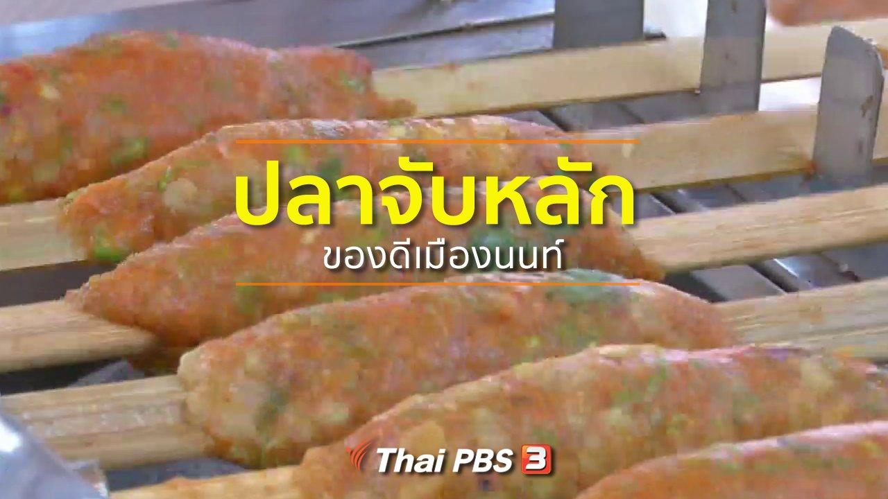 ทุกทิศทั่วไทย - อาชีพทั่วไทย : ปลาจับหลักของดีเมืองนนท์