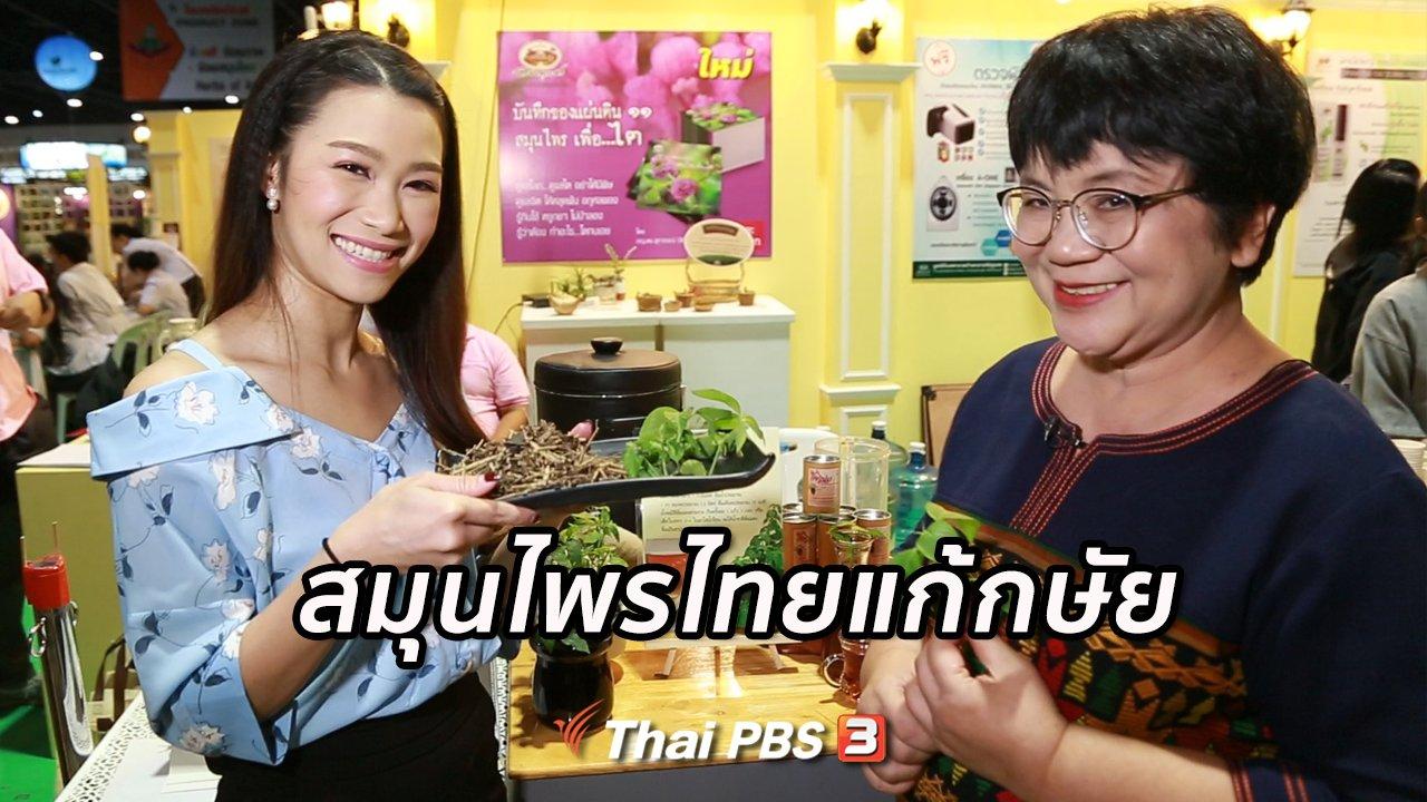 คนสู้โรค - รู้สู้โรค : สมุนไพรไทยแก้กษัย ไตพิการ