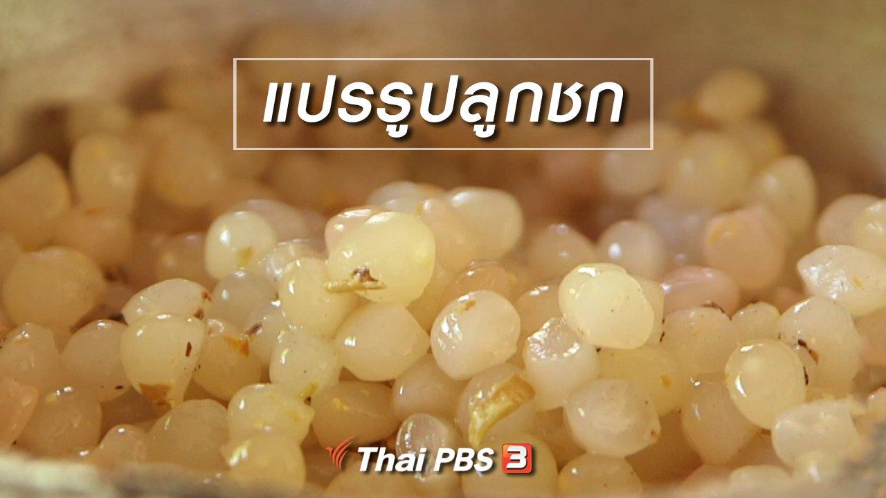 จับตาสถานการณ์ - ตะลุยทั่วไทย : แปรรูปลูกชก