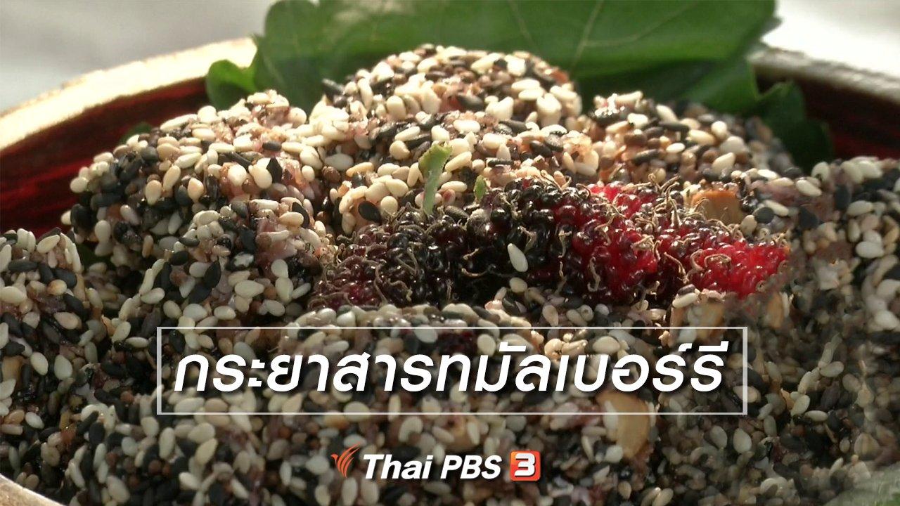 จับตาสถานการณ์ - ตะลุยทั่วไทย : กระยาสารทมัลเบอร์รี
