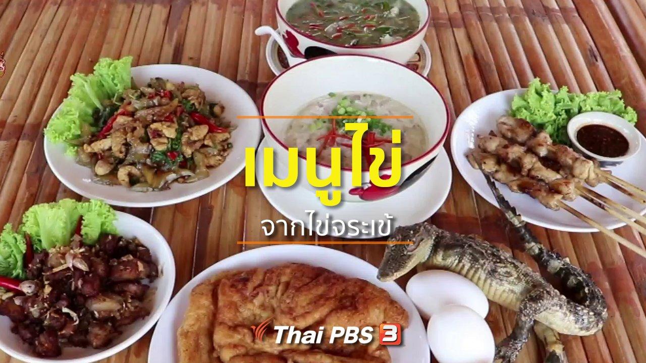 ทุกทิศทั่วไทย - อาชีพทั่วไทย : เพิ่มมูลค่าไข่จระเข้ทำไข่เจียวและไข่ตุ๋น