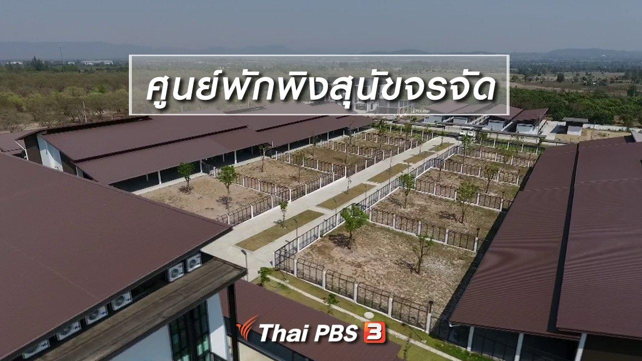 จับตาสถานการณ์ - ตะลุยทั่วไทย : ศูนย์พักพิงสุนัขจรจัด