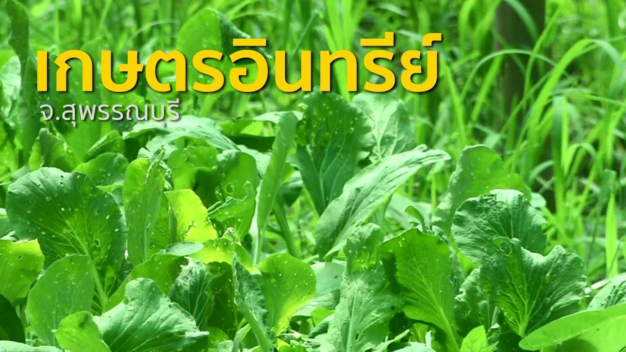 ทุกทิศทั่วไทย - ชุมชนทั่วไทย : เกษตรอินทรีย์และแปรรูปข้าวแผ่นปรุงรส