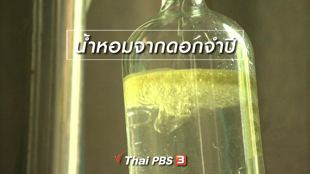 จับตาสถานการณ์ - ตะลุยทั่วไทย : น้ำหอมจากดอกจำปี