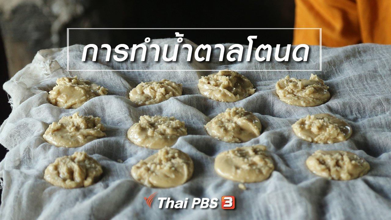 ทั่วถิ่นแดนไทย - เรียนรู้วิถีไทย : การทำน้ำตาลโตนด