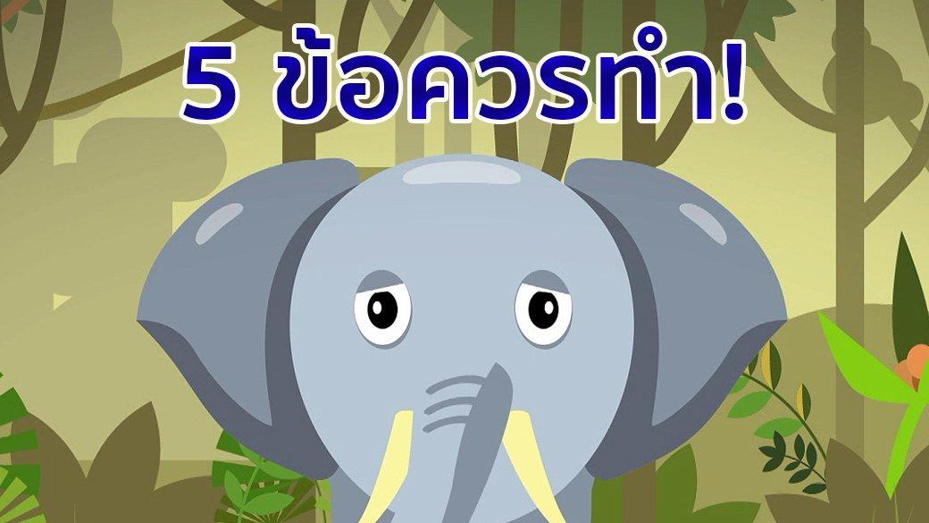 คิดส์ทันข่าว - 5 ข้อควรทำ! เมื่อเจอช้างป่า