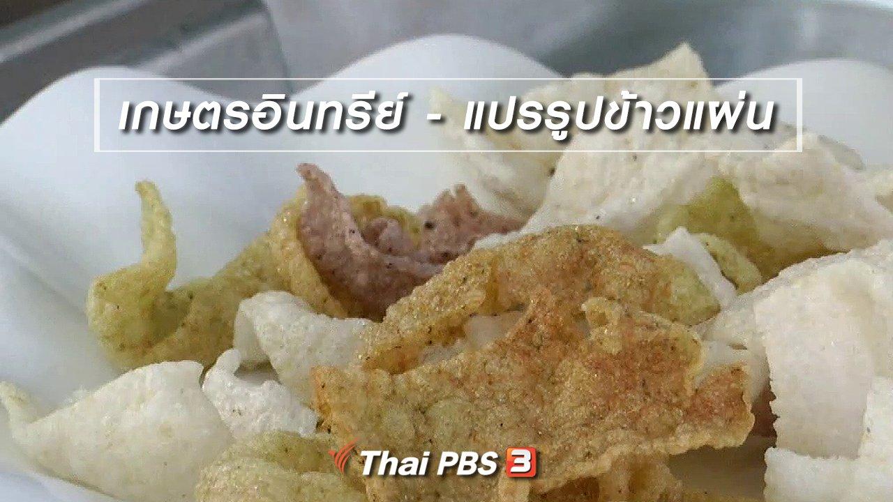 จับตาสถานการณ์ - ตะลุยทั่วไทย : เกษตรอินทรีย์ - แปรรูปข้าวแผ่น