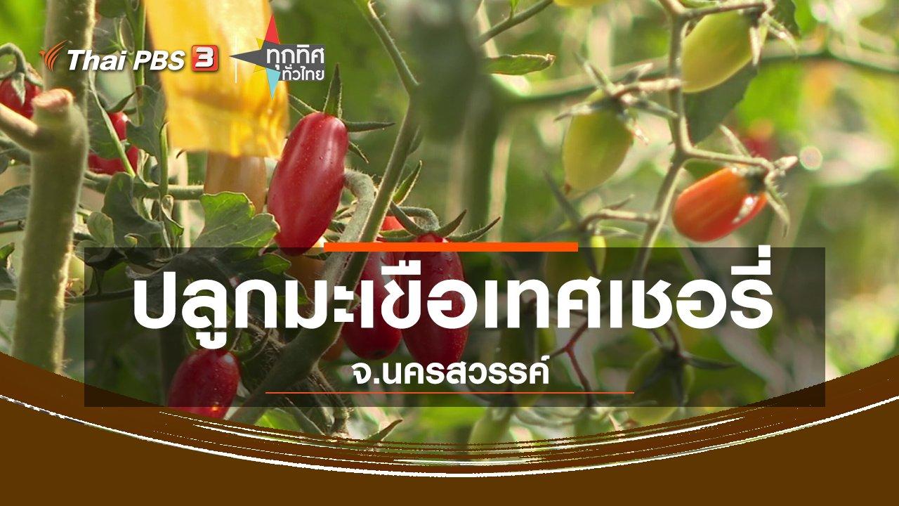 ทุกทิศทั่วไทย - อาชีพทั่วไทย : ปลูกมะเขือเทศเชอรี่ขายรายได้งาม จ.นครสวรรค์