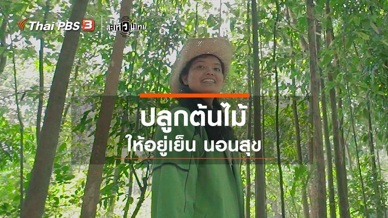 """สะเทือนไทย - """"ปลูกต้นไม้"""" ให้อยู่เย็น นอนสุข"""