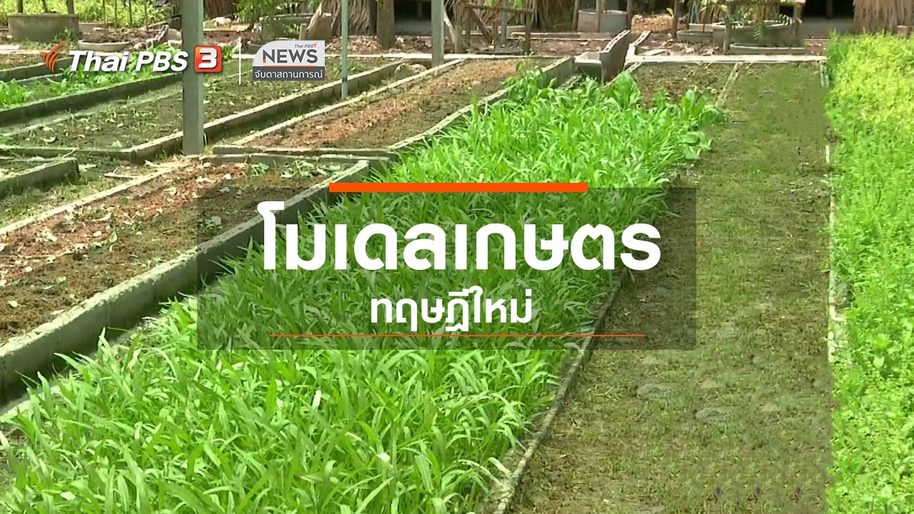 จับตาสถานการณ์ - ตะลุยทั่วไทย : โมเดลเกษตรทฤษฎีใหม่