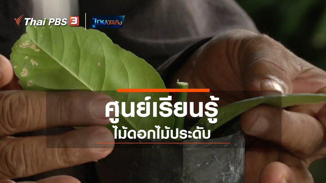 จับตาสถานการณ์ - ตะลุยทั่วไทย : ศูนย์เรียนรู้ไม้ดอกไม้ประดับ