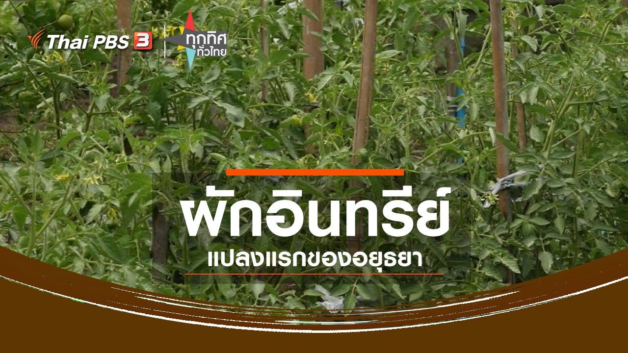 ทุกทิศทั่วไทย - ชุมชนทั่วไทย : ผักอินทรีย์แปลงแรกของอยุธยา