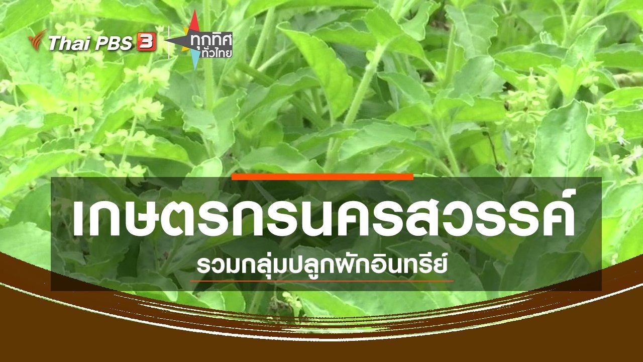 ทุกทิศทั่วไทย - ชุมชนทั่วไทย : เกษตรกรนครสวรรค์รวมกลุ่มปลูกผักอินทรีย์