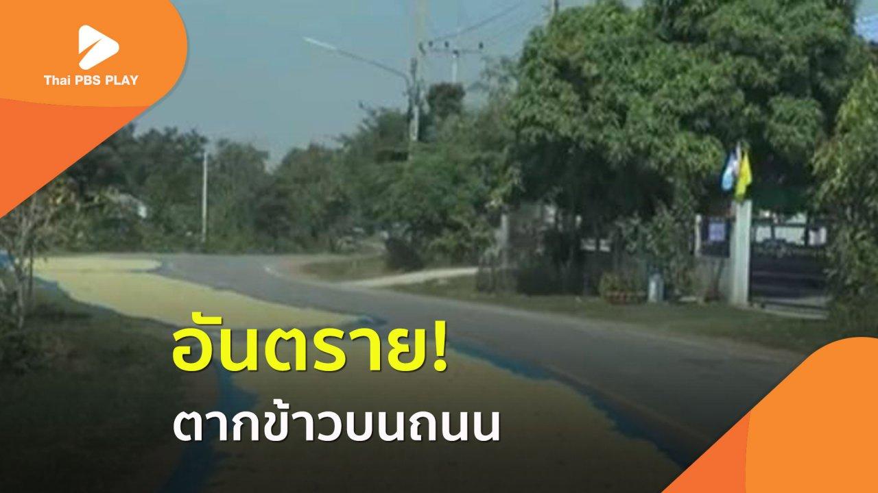 Thai PBS Play - อันตราย! ตากข้าวบนถนน