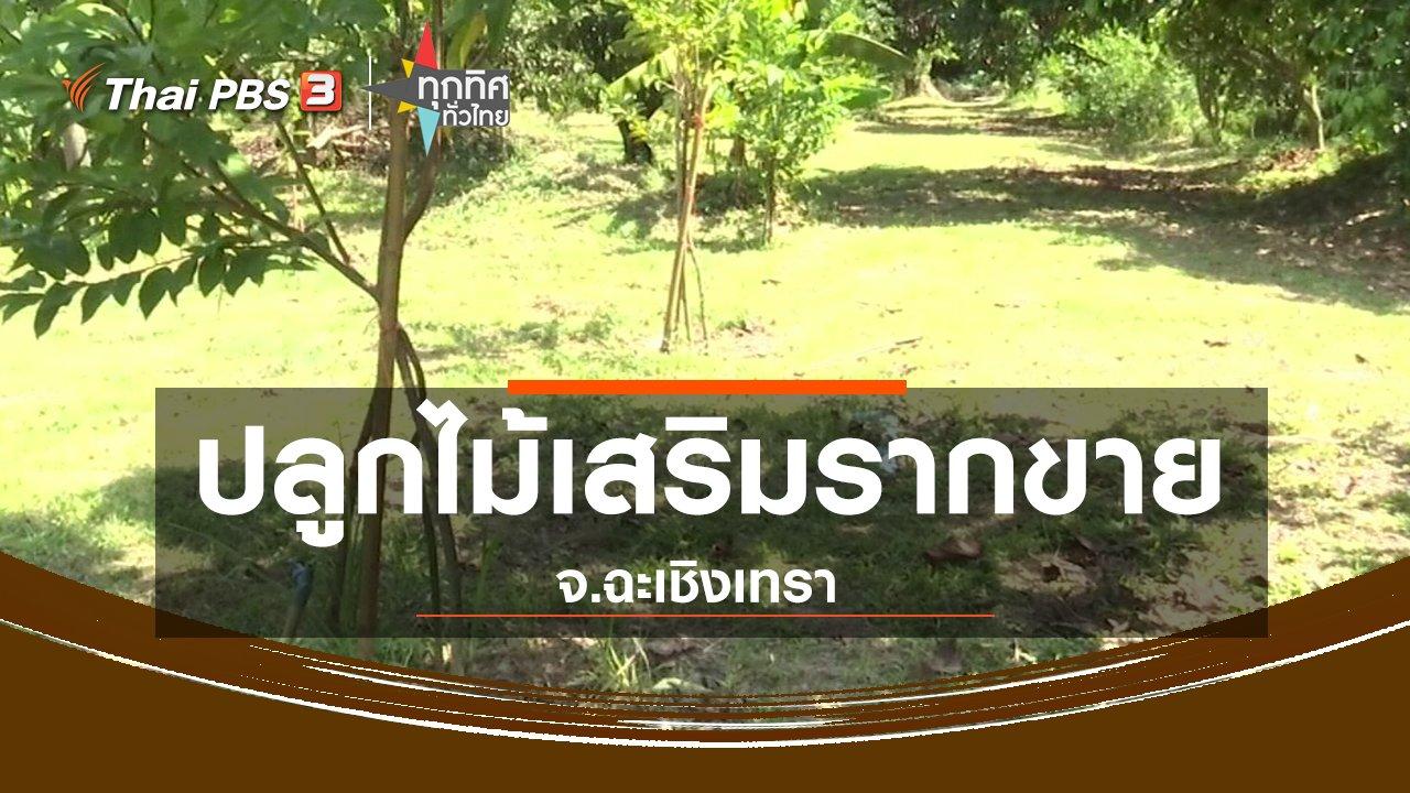 ทุกทิศทั่วไทย - ชุมชนทั่วไทย : ปลูกไม้เสริมรากขาย จ.ฉะเชิงเทรา
