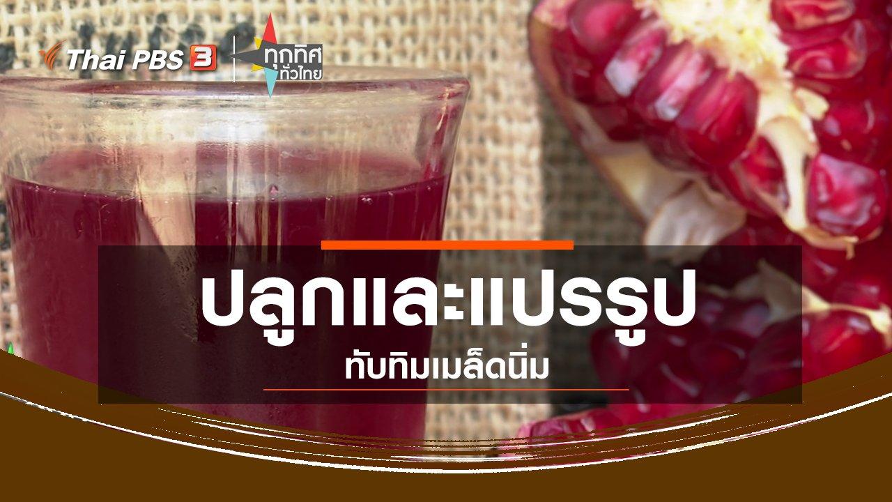 ทุกทิศทั่วไทย - อาชีพทั่วไทย : ปลูกและแปรรูปทับทิมเมล็ดนิ่ม
