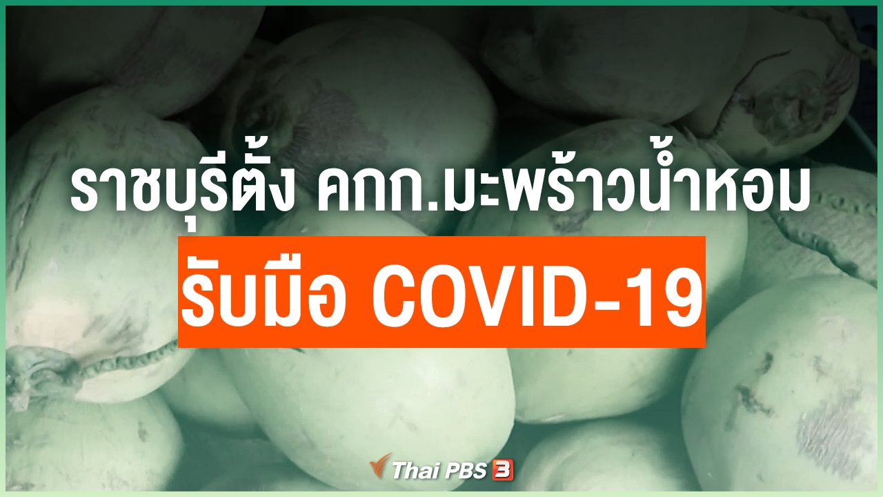 Coronavirus - ราชบุรีตั้งคณะกรรมการมะพร้าวน้ำหอมรับมือ COVID-19