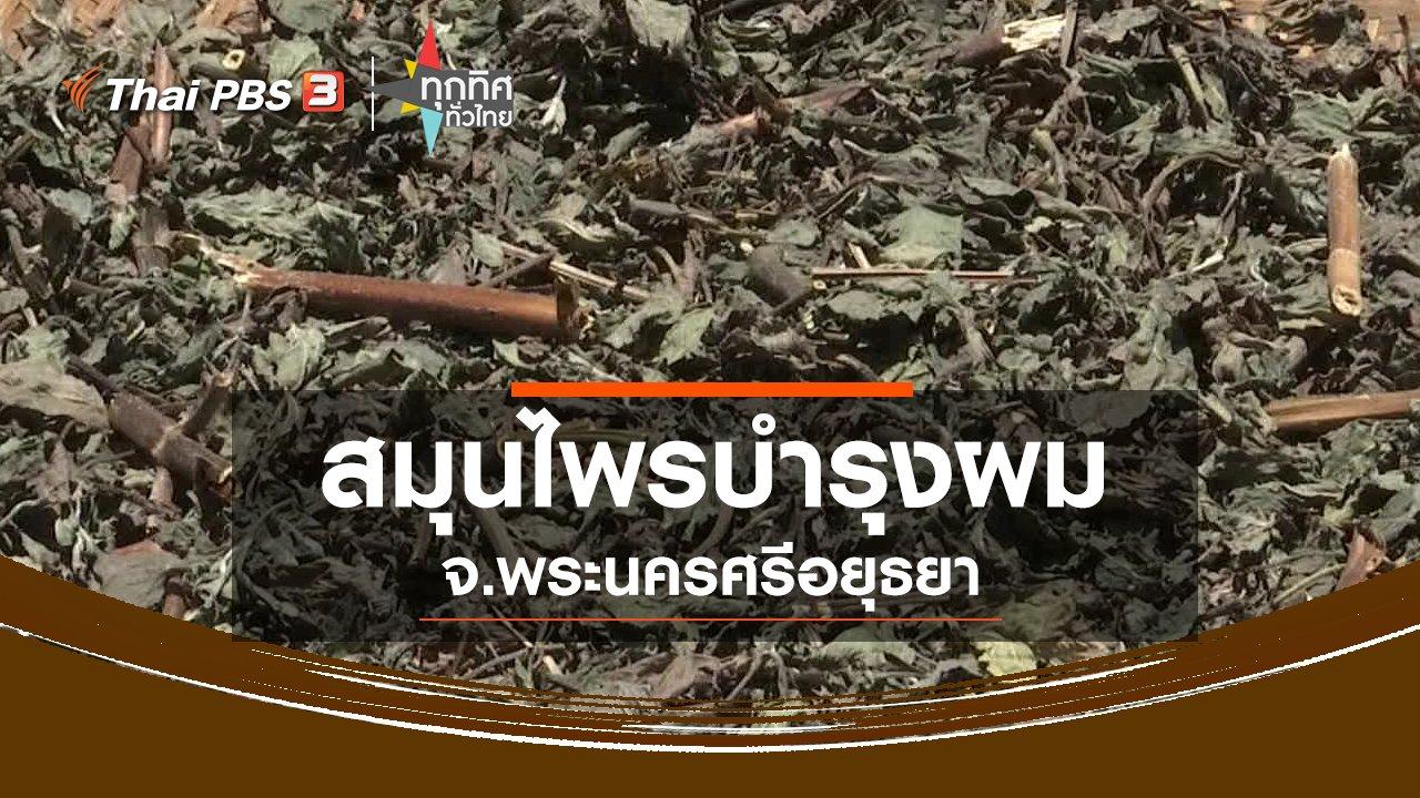 ทุกทิศทั่วไทย - สมุนไพรบำรุงผมกะเม็ง ทองพันชั่ง จ.พระนครศรีอยุธยา