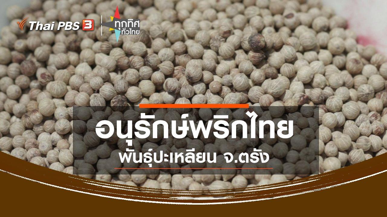 ทุกทิศทั่วไทย - อนุรักษ์พริกไทยพันธุ์ปะเหลียน จ.ตรัง