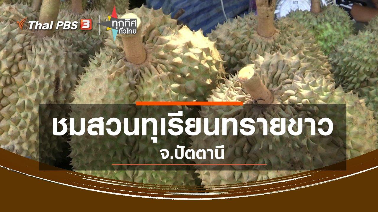 ทุกทิศทั่วไทย - ชมสวนทุเรียนทรายขาว จ.ปัตตานี